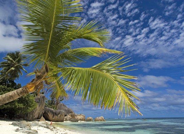 Najczęściej poszukiwane kierunki na wakacje